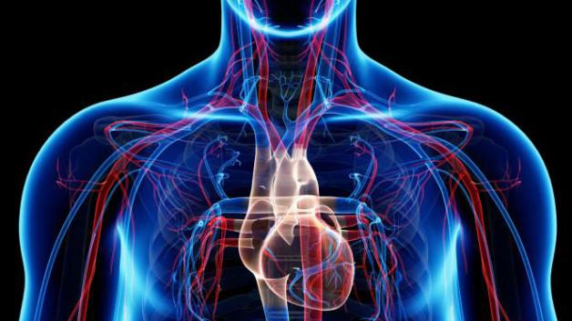 cardiook